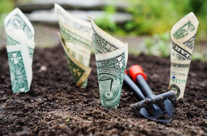 Få professionelt råd og vejledning til at komme i gang med at investere